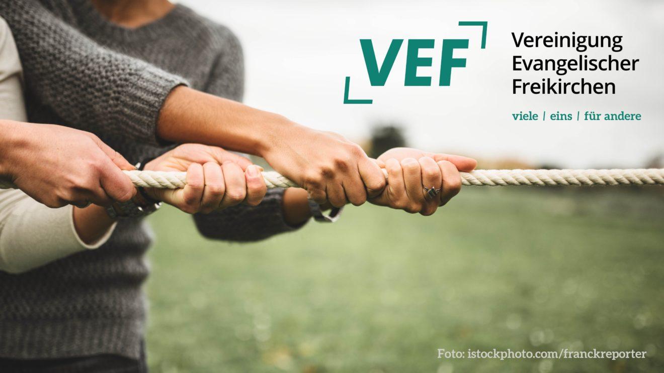 VEF | Neue Webseite